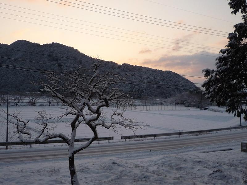 青垣のご自宅から見える風景